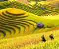 paysages-du-nord-vietnam