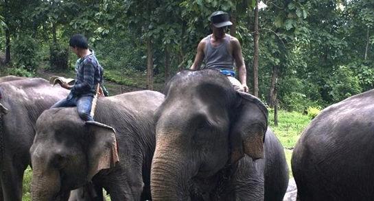 Laos - Randonnée & Trek